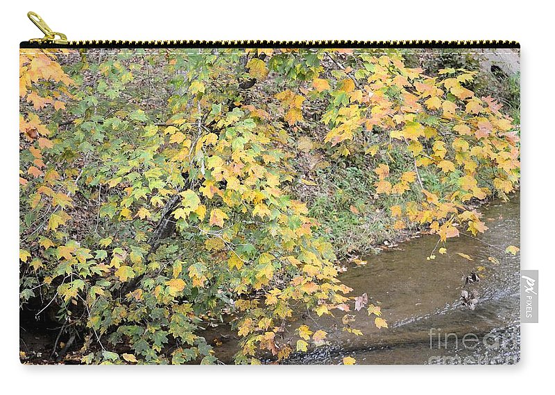 Creekside Gold 2012 Carry-all Pouch featuring the photograph Creekside Gold 2012 by Maria Urso