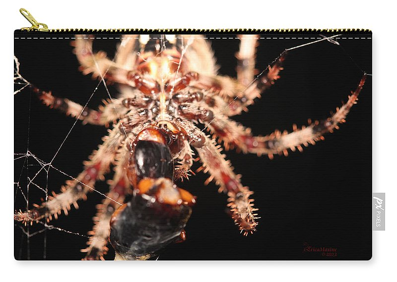 Spider Carry-all Pouch featuring the photograph Creepy Spider by Ericamaxine Price