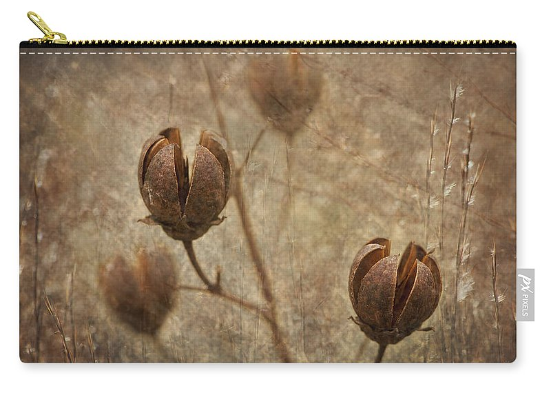 Crepe Carry-all Pouch featuring the photograph Crepe Myrtle Seed Pods With Grunge And Textures by Kathy Clark