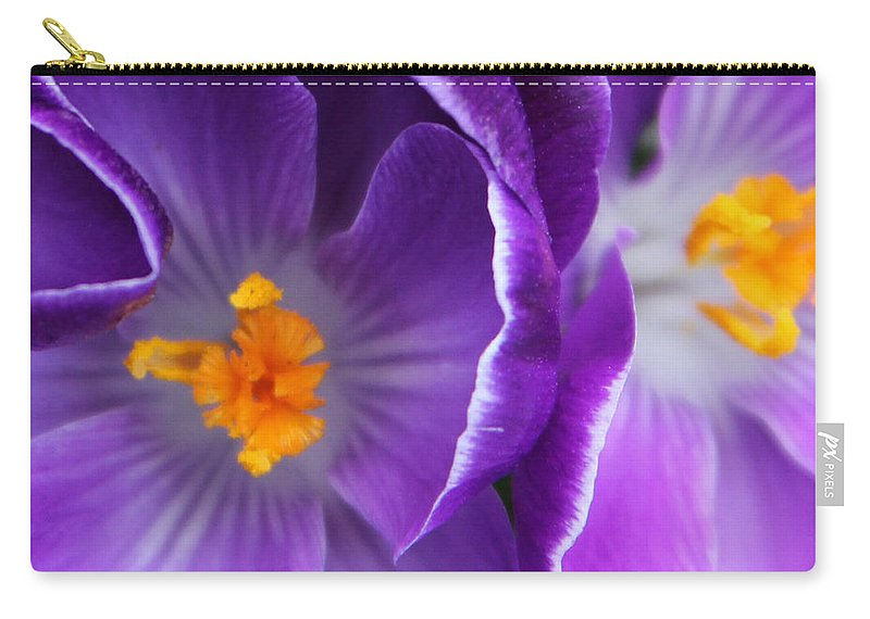 Flower Carry-all Pouch featuring the photograph Crocus Haze by Carolyn Stagger Cokley