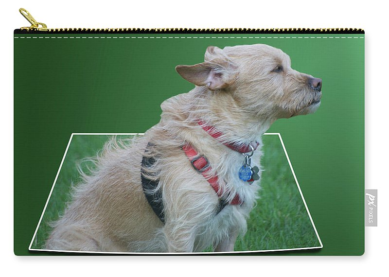 Wind Carry-all Pouch featuring the photograph Cruz Enjoying A Warm Gentle Breeze 02 by Thomas Woolworth