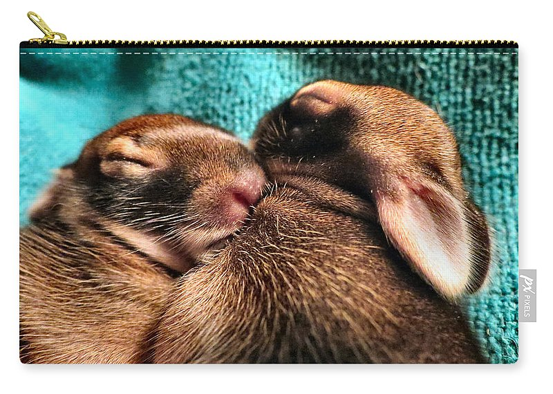 Baby Carry-all Pouch featuring the photograph Cuddles by Art Dingo