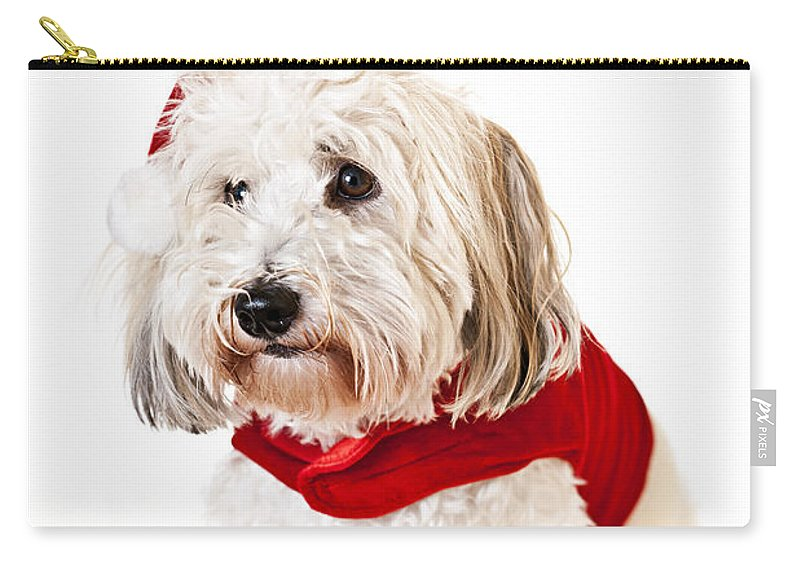 Dog Carry-all Pouch featuring the photograph Cute Dog In Santa Outfit by Elena Elisseeva