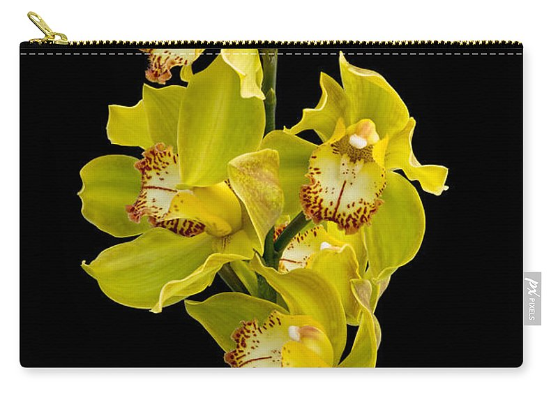 Ann Garrett Carry-all Pouch featuring the photograph Cymbidium - Boat Orchid by Ann Garrett