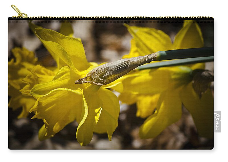 Daffodil Carry-all Pouch featuring the photograph Daffodil Sunshine by Teresa Mucha