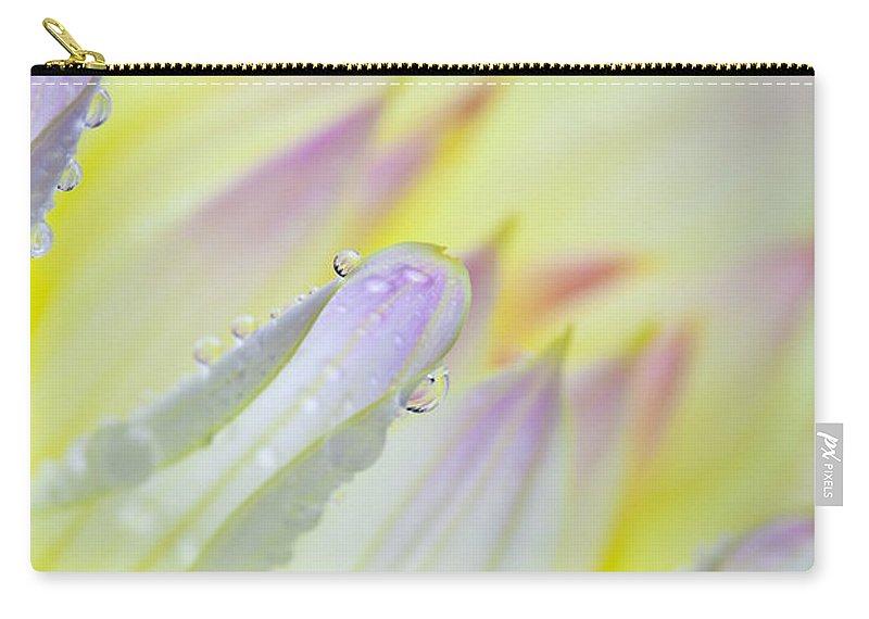 Dahlia Carry-all Pouch featuring the photograph Dahlia Flower 07 by Nailia Schwarz