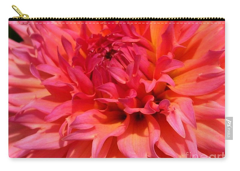 Dahlia Carry-all Pouch featuring the photograph Dahlia Named Oreti Lass by J McCombie