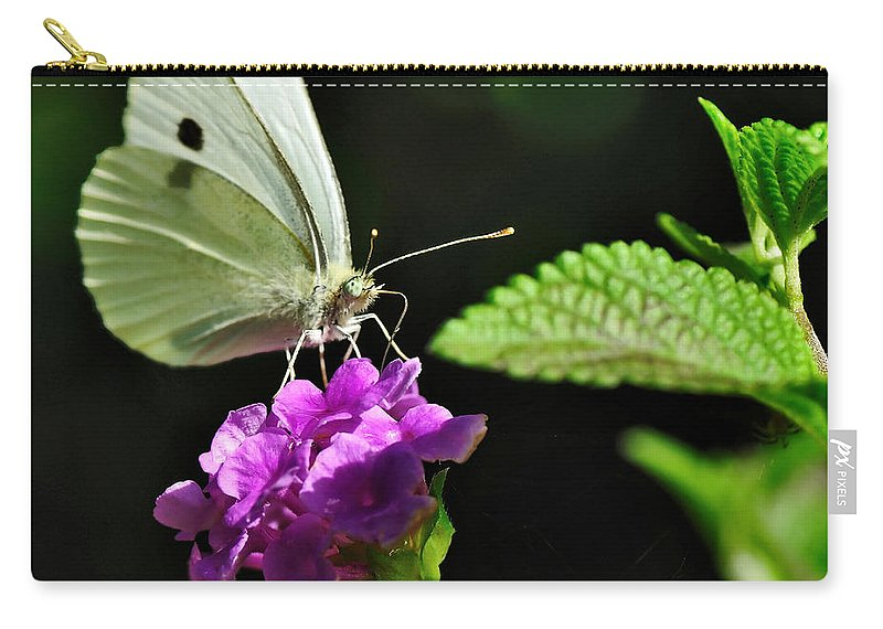 Photography Carry-all Pouch featuring the photograph Dainty Butterfly 2 by Kaye Menner