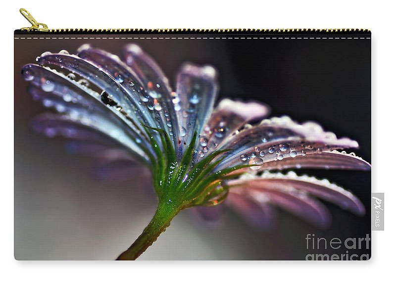 Photography Carry-all Pouch featuring the photograph Daisy Abstract With Droplets by Kaye Menner