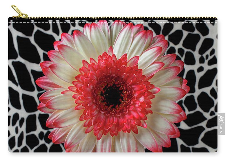 Daisy Mum Flower Vase Red Carry-all Pouch featuring the photograph Daisy And Graphic Vase by Garry Gay