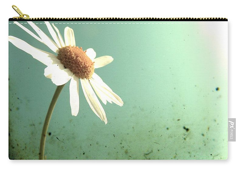 Daisy Carry-all Pouch featuring the photograph Daisy by Marianna Mills