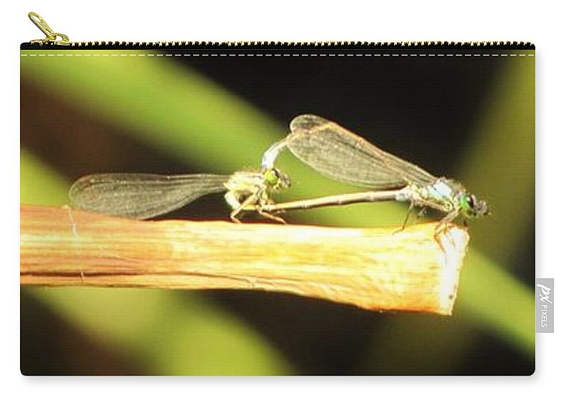 Damselflies Carry-all Pouch featuring the photograph Damselflies In Nature by Michelle Cassella