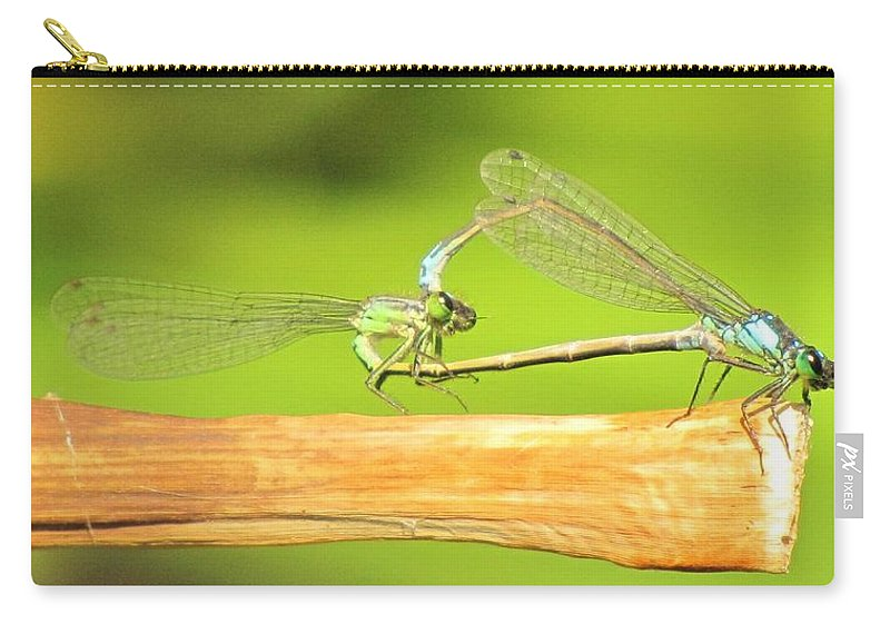 Damselflies Carry-all Pouch featuring the photograph Damselflies by Michelle Cassella