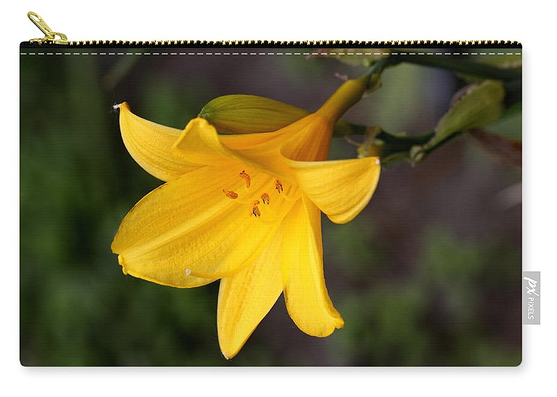 Doug Lloyd Carry-all Pouch featuring the photograph Day Lilly by Doug Lloyd
