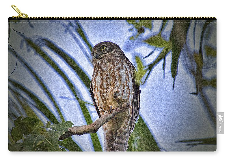 Barking Owl Carry-all Pouch featuring the photograph Daylight Shy V2 by Douglas Barnard