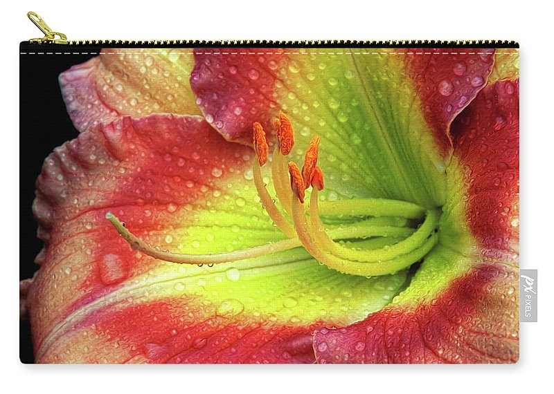 Daylily Carry-all Pouch featuring the photograph Daylily by Dave Mills