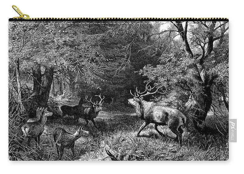 1873 Carry-all Pouch featuring the photograph Deer by Granger