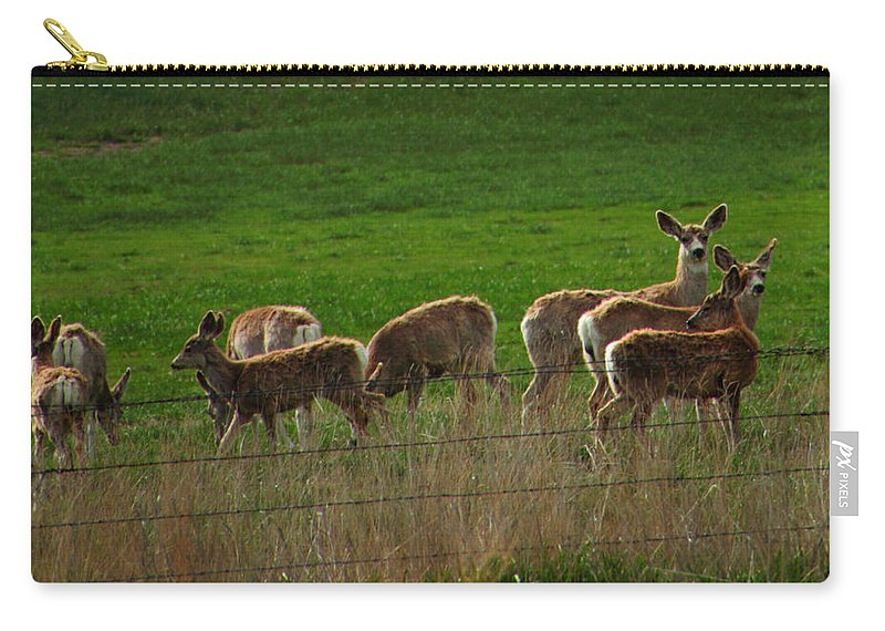 Deer Carry-all Pouch featuring the photograph Deer In The Meadow by Rebecca Akporiaye