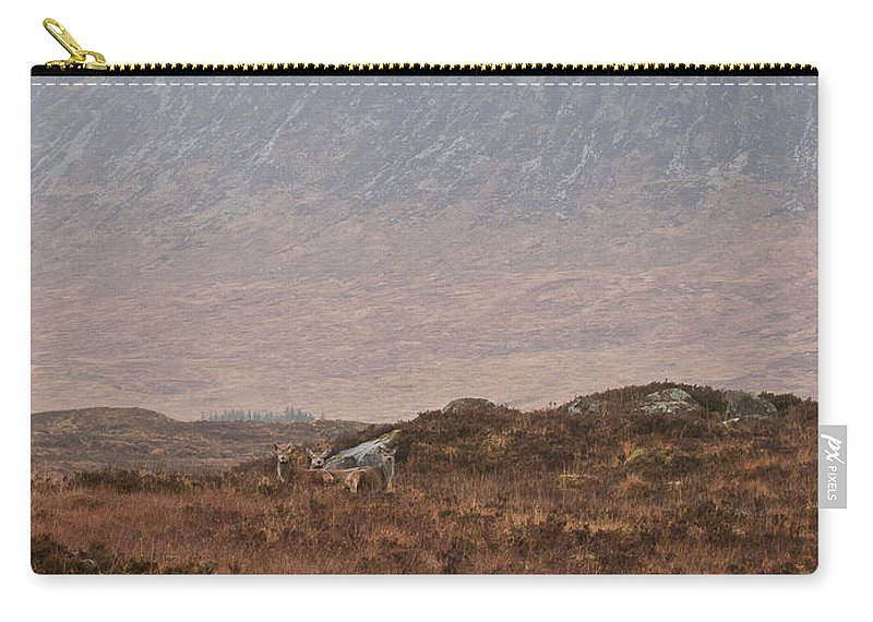 Rannoch Moor Carry-all Pouch featuring the photograph Deer Southern Highlands by Gary Eason