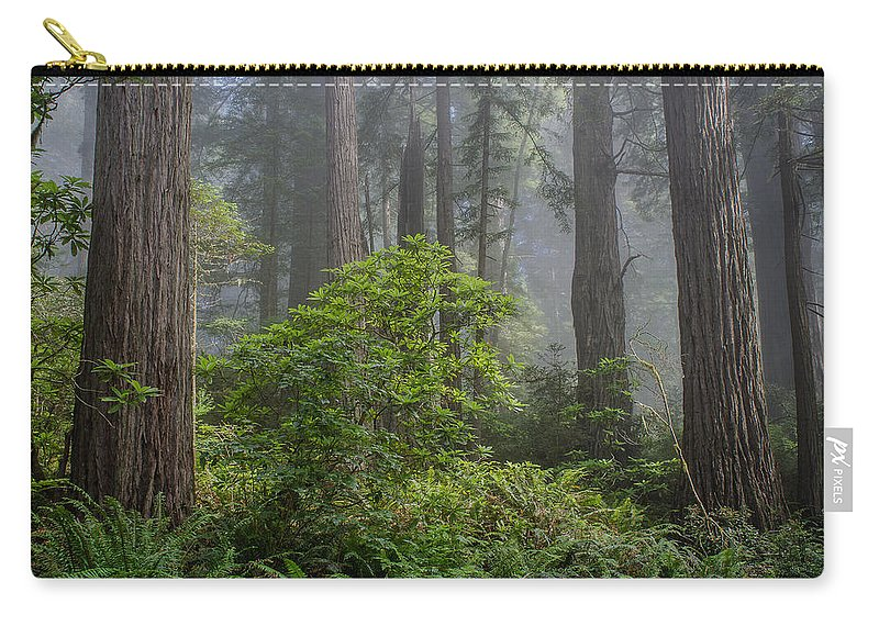 Redwoods Carry-all Pouch featuring the photograph Del Norte Redwoods by Greg Nyquist
