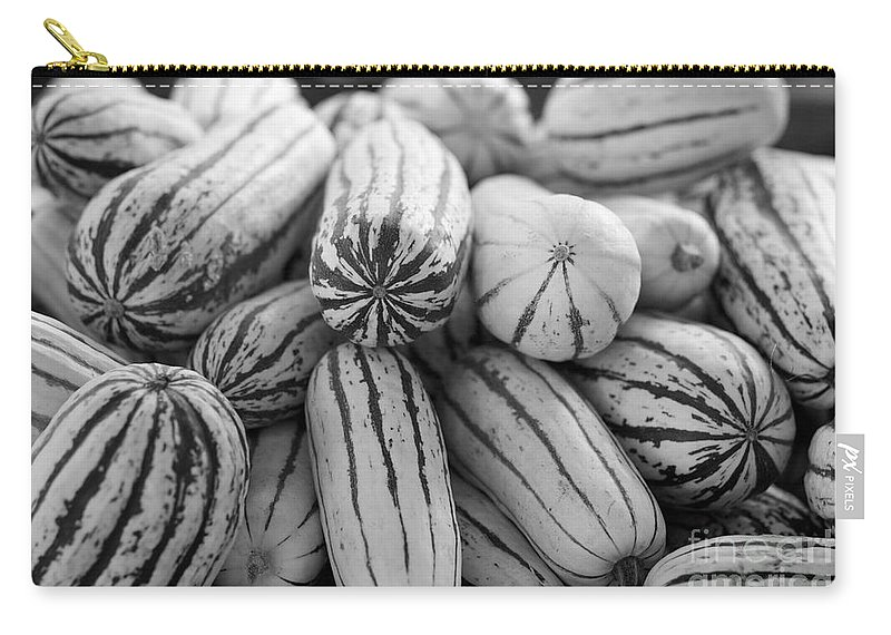Delicata Carry-all Pouch featuring the photograph Delicata Winter Squash In Black by Brooke Roby