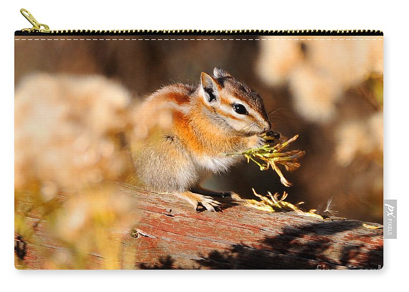 Desert Carry-all Pouch featuring the photograph Desert Chipmunk Eating His Breakfast by Gary Whitton