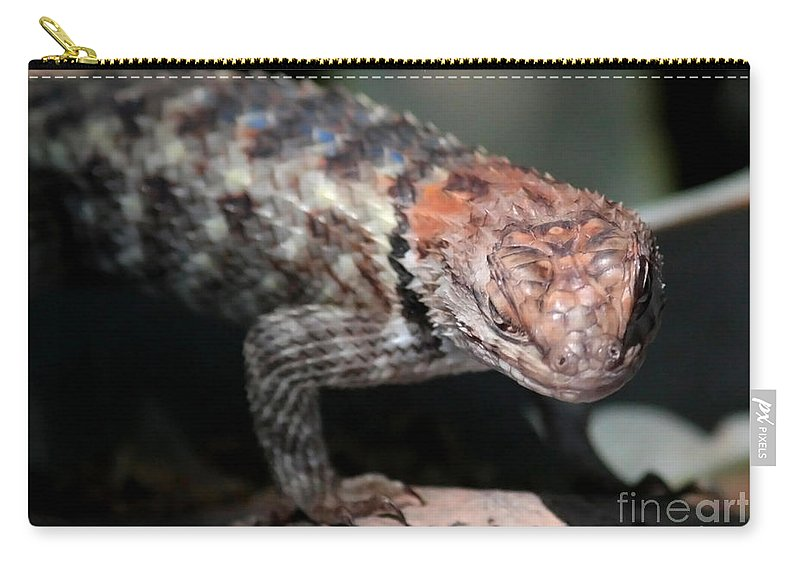 Lizard Carry-all Pouch featuring the photograph Desert Lizard by Carol Groenen