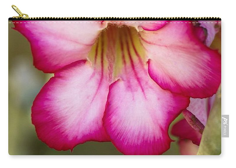 Rose Carry-all Pouch featuring the photograph Desert Rose by Sabrina L Ryan