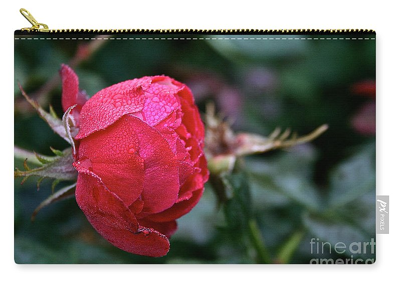 Flower Carry-all Pouch featuring the photograph Dew Drenched Rose by Susan Herber