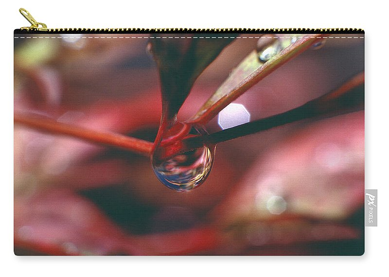 Dew Drop Carry-all Pouch featuring the photograph Dew Drop by Mark Greenberg