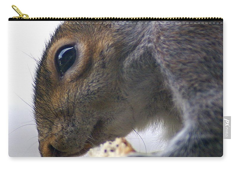 Squirrel Carry-all Pouch featuring the photograph Dinner Time by Ben Upham III