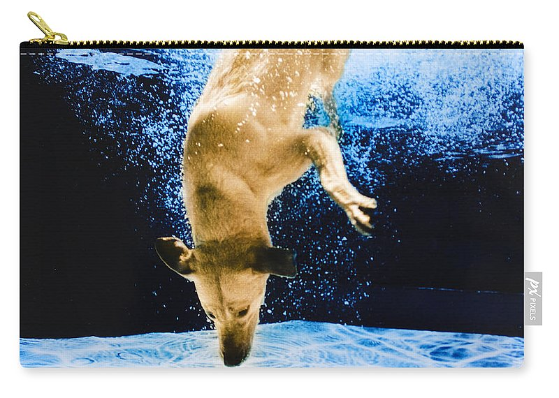 Dog Carry-all Pouch featuring the photograph Diving Dog 3 by Jill Reger