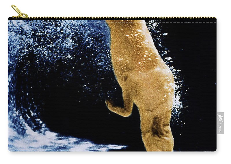 Dog Carry-all Pouch featuring the photograph Diving Dog by Jill Reger
