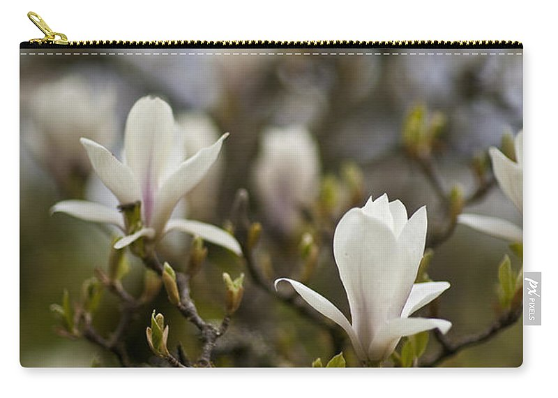 Flower Carry-all Pouch featuring the photograph Dogwood Duet by Mike Reid