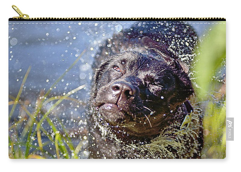Labradour Retreiver Carry-all Pouch featuring the photograph Doing The Shake by Susan Capuano