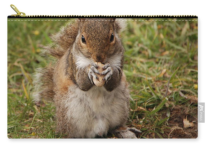 Squirrel Carry-all Pouch featuring the photograph Dont Even Think About It Its Mine by Grace Grogan