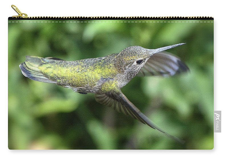 Anna's Hummingbird Carry-all Pouch featuring the photograph Don't Worry Be Happy by Saija Lehtonen