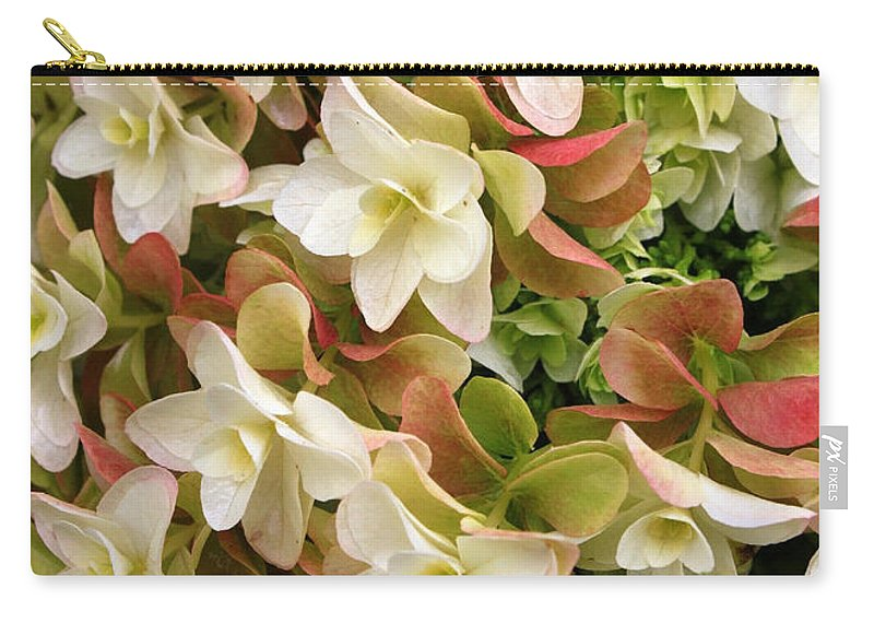 Flowers Carry-all Pouch featuring the photograph Double Hydrangeas by Carol Groenen