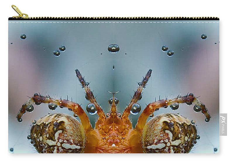 Spider Carry-all Pouch featuring the photograph Double Spider by Jean Noren