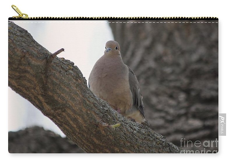 Dove Carry-all Pouch featuring the photograph Dove by Lori Tordsen