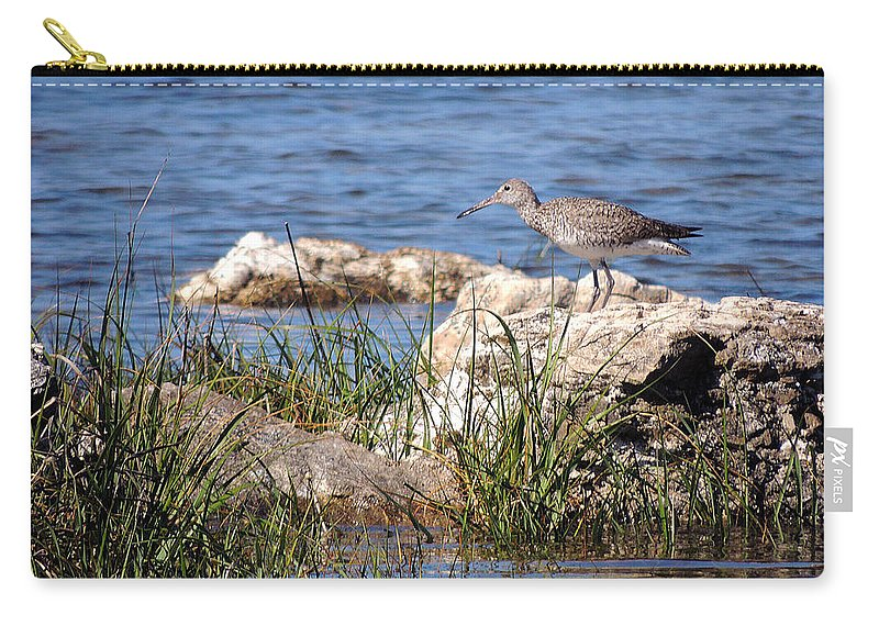Birds Carry-all Pouch featuring the photograph Dowitcher by Marilyn Holkham