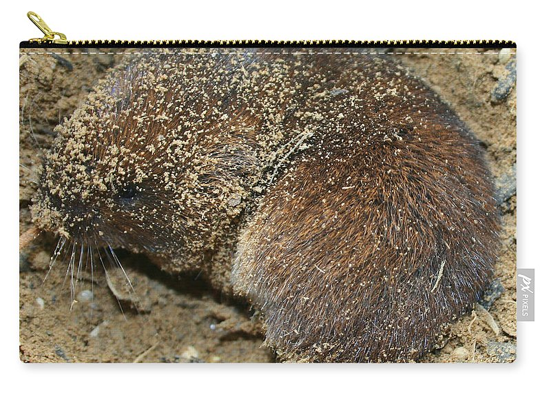 Mole Carry-all Pouch featuring the photograph Down Right Dirty Mole by Kathy Clark