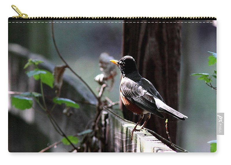 Carry-all Pouch featuring the photograph Down The Lane by Travis Truelove