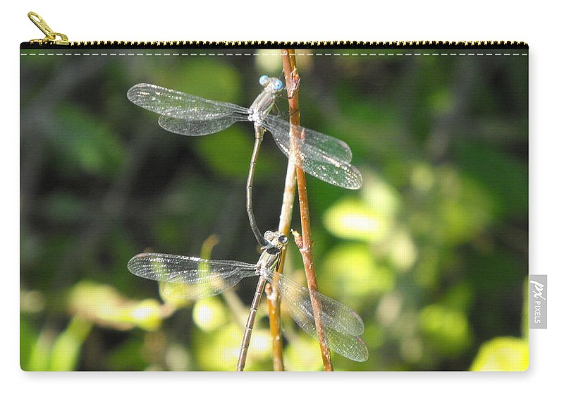 Dragonflies Carry-all Pouch featuring the photograph Dragonflies by Paulina Roybal