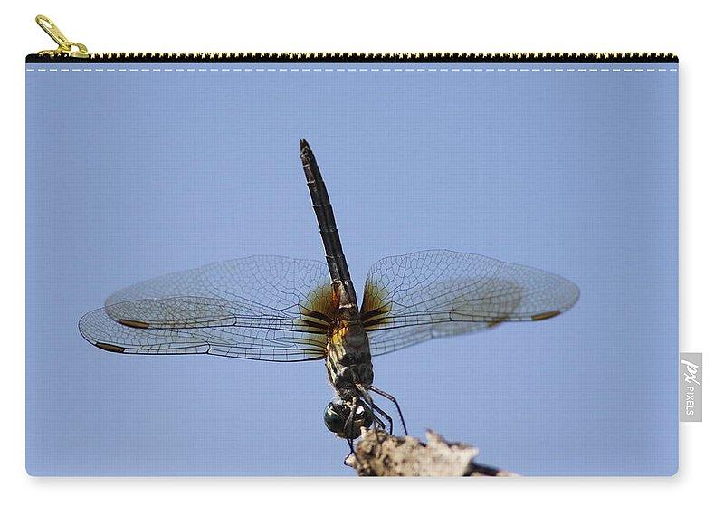 Dragonfly Carry-all Pouch featuring the photograph Dragonfly - Handstand by Travis Truelove