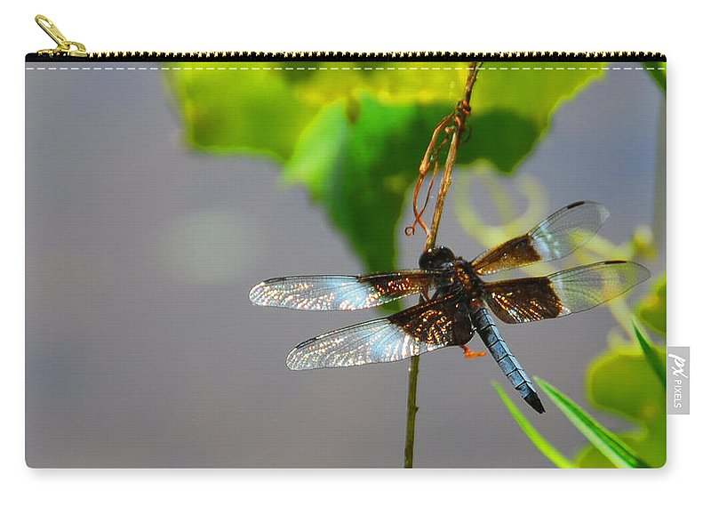 Insects Carry-all Pouch featuring the photograph Dragonfly by Cindy Manero