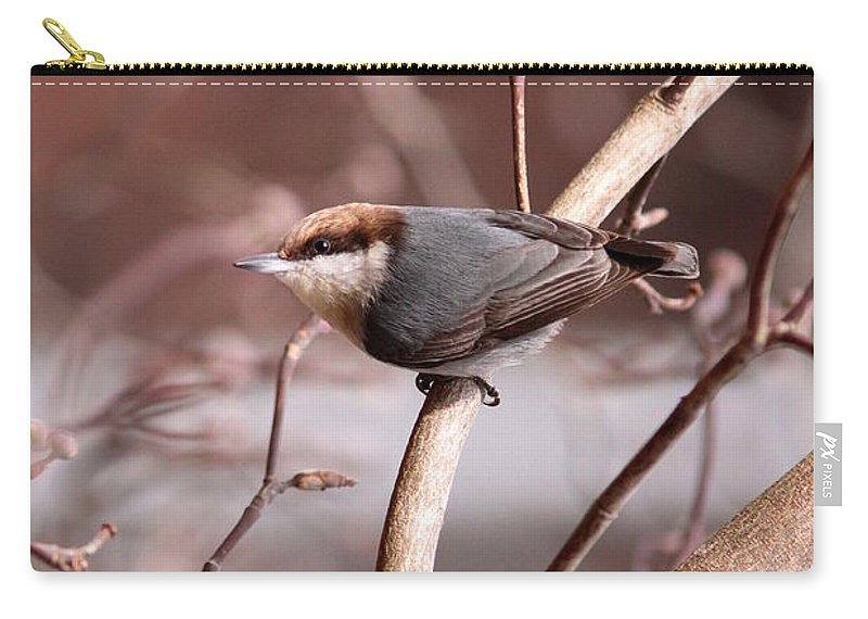 Brown Headed Nuthatch Carry-all Pouch featuring the photograph Dressed To Kill by Travis Truelove