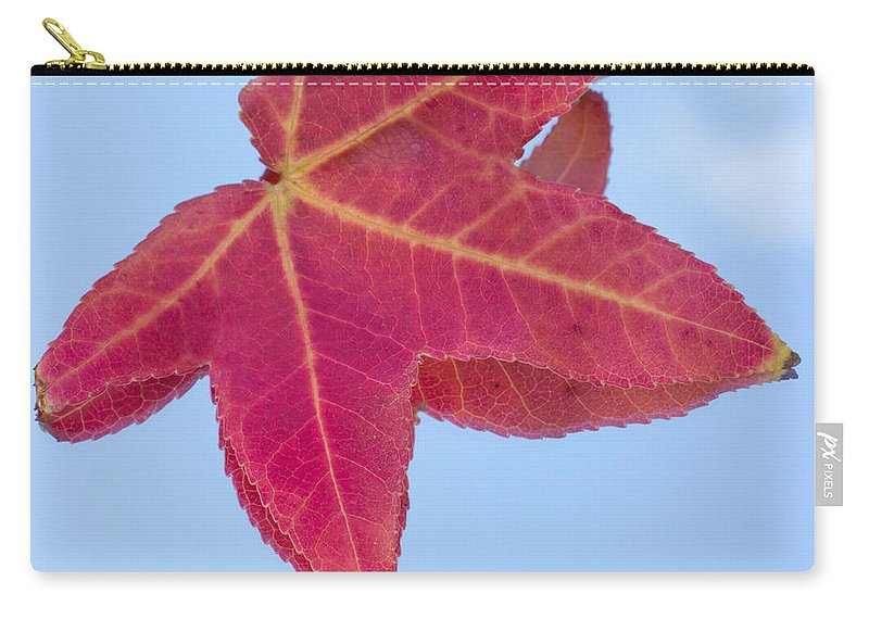Amber Carry-all Pouch featuring the photograph Drifting Falling by Heidi Smith