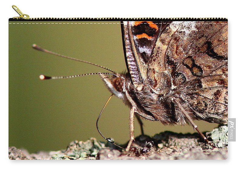 Swallowtail Butterfly Carry-all Pouch featuring the photograph Drop Of Sweets by Travis Truelove