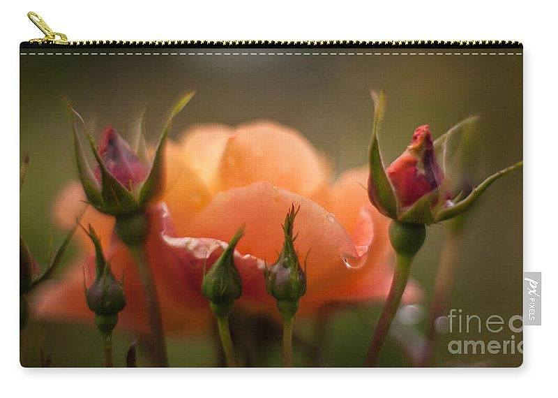 Rose Carry-all Pouch featuring the photograph Drops Of Orange by Mike Reid